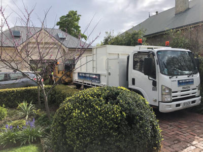 BOSS-Tree-Stump-Removal-Pruning- 12